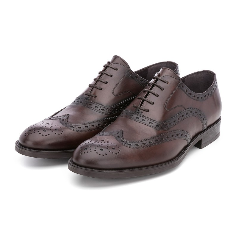 4f187191aa4875 ... MODEL 5003 - SERGIO SERRANO View larger. oxford-shoes - OXFORD MURANO  BROWN ...